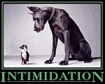 intimidationDog