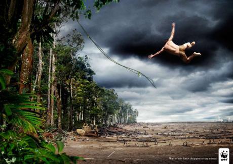 Tarzan.WWF
